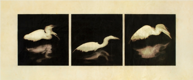 "Egret by Kimberly Chiaris for the show ""H2O"". She explains, ""It's a digital print on Gampi paper. I applied silver leaf to the back only over the print area. Then I coated both sides several times with shellac. The silver shows through where the white areas of the print are because the Gampi becomes translucent from the shellac."""